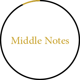 Jizan Perfumes Middle Notes